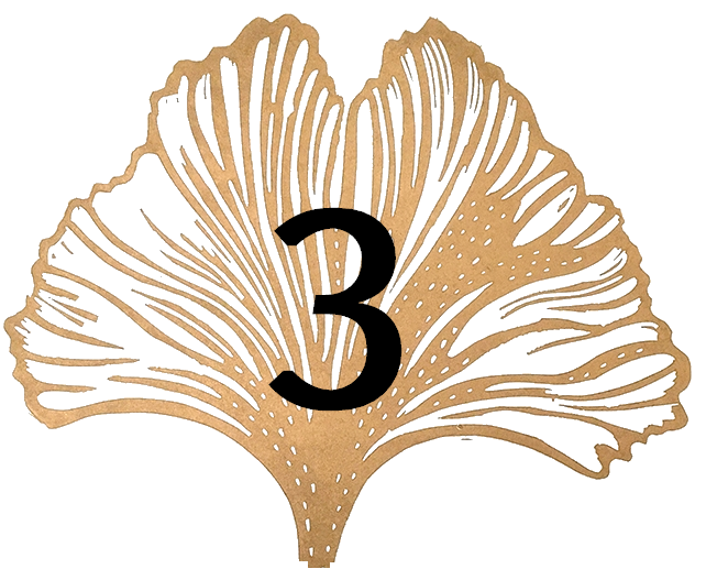 Satochip ginkgo leaf #3