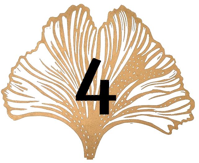 Satochip ginkgo leaf #4