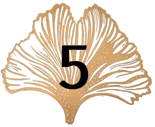 Satochip ginkgo leaf #5