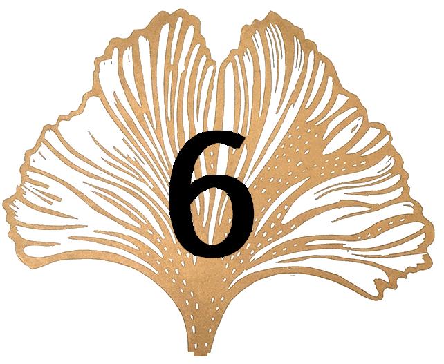 Satochip ginkgo leaf #6